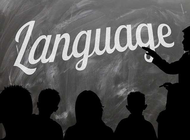 Языкознание