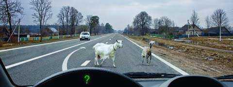 Обязаны ли Вы включить сигнал левого поворота при объезде препятствия?